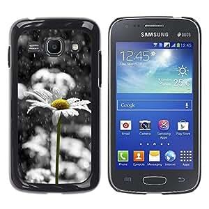 TopCaseStore / la caja del caucho duro de la cubierta de protección de la piel - Daisy White Sad Beautiful Black - Samsung Galaxy Ace 3 GT-S7270 GT-S7275 GT-S7272