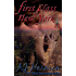 First Class to New York (First Class series Book 1)