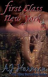 First Class to New York (First Class series Book 1)