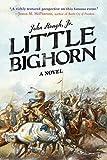 img - for Little Bighorn: A Novel book / textbook / text book