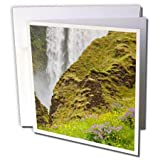 3dRose Danita Delimont - Waterfalls - Iceland, Seljalandsfoss Waterfall, Wildflowers - 1 Greeting Card with envelope (gc_277518_5)