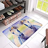 InterestPrint Watercolor Colorful Arabian Horse Animal Portrait Doormat Anti-Slip Entrance Mat Floor Rug Indoor/Outdoor Door Mat Home Decor, Rubber Backing Large 30''(L) x 18''(W)