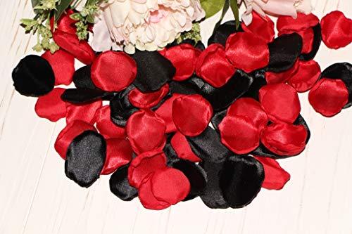 (Red and Black, Wedding Petals, Set of 100, Flower Girl Petals, Rose Petal Aisle, Goth Rose Decor, Black red Wedding, Hollywood Party Decor, Lady Bug Birthday)