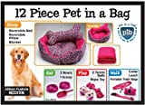 Allison Fuchsia 12 Piece Pet In A Bag Set , Medium