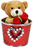 Archies Soft Toy Teddy Bucket, Multi Color (14cm)