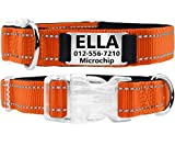 Taglory Personalized Dog Collar with Nameplate, Custom Engraved Pet ID Tags No Noise,Reflective Training Collars for Small Medium Large Dogs,Orange