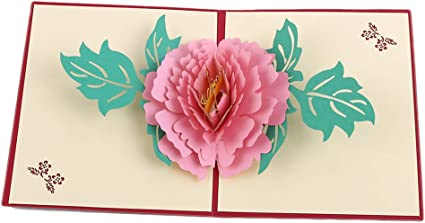 Handmade Pink Peony Flower Pop Up Greeting Card Pop Out Card 3D Cards
