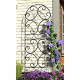 "Panacea Scroll Trellises, Black, 72""H, Pack of 2"