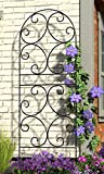 Panacea Scroll Trellises, Black, 72''H, Pack of 2
