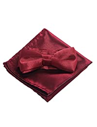 Boys Bow Ties Pocket Square Set - Pre Bow Tie Handkerchief for kids, Festival (Wine Red)
