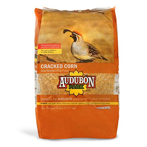Audubon Park 12223 Cracked Corn Wild Bird and Critter Food, 5-Pounds - Make Platform Bird Feeder