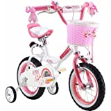 Royalbaby Jenny Princess Pink Girl's Bike with Training Wheels and Basket, Perfect Gift for Kids (Pink, 12 inch)