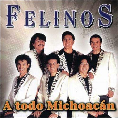 Todo Michoacan