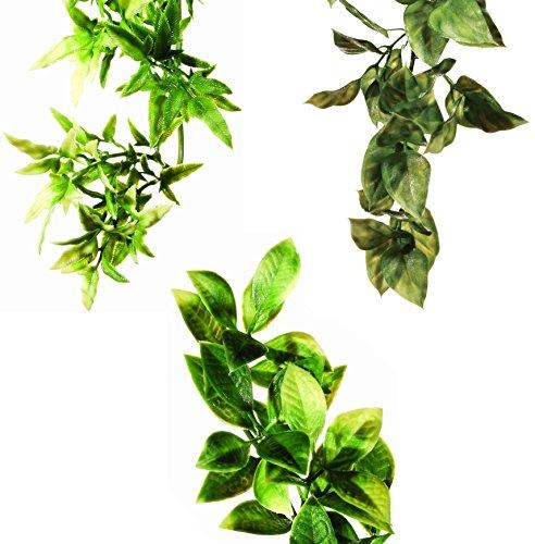 Exo Terra Plastic Terrarium Small Plant Bundle of 3 (1-Croton, 1-Amapallo, and 1-Mandarin) (Terrarium Plant Plastic)