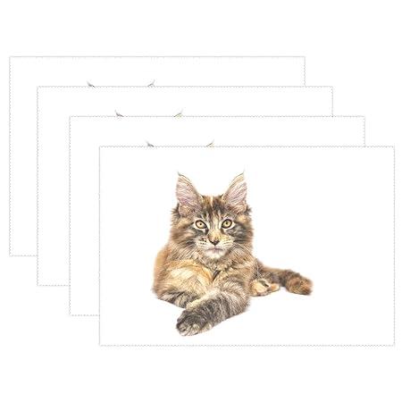 YUMOING - Juego de 4 manteles Individuales para Mascotas, diseño ...