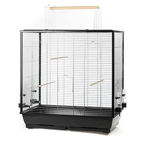 Large Bird Cage For Budgies, Canaries, Large Parakeets With Outside Space by Amazon