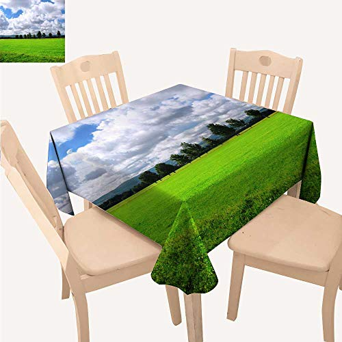 UHOO2018 Polyester Fabric Tablecloth Square/Rectangle Ireland Summer & Outdoor Picnics,50x 50inch ()