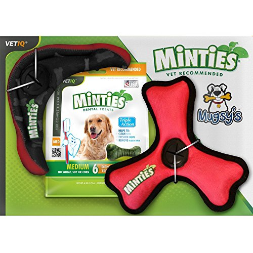 vet-iq-minties-mugsys-interactive-fun-gift-6-dental-treats-with-toss-fetch-tug-triple-action