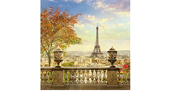 12x12ft Paris Balcony Sightseeing Eiffel Tower Backdrop Banister Flowers City Aerial View Photography Background Peace Dove Pigeons Urban Street Buildings French Tourism Studio Prop Vinyl Banner