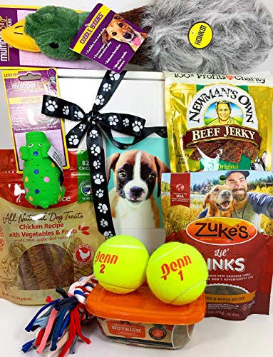 Deluxe Dog Gift Box Basket with 4 Grain Free Gluten Free Treats and 5 Toys for A Favorite Canine Fur Baby Perfect for Dog Lover Dog Birthday Dog Dog Gift for Furry Pet Friend- Prime