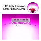 1200W Plant Growing Lamps Beatva Dimmable X4 Full Spectrum for Greenhouse Plants Fruits and Vegetables(1200W)
