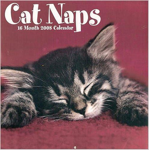 Cat Naps 2017 Engagement Calendar