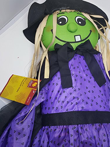 Home Accents Scarecrow 6 Foot Green face Witch with Black hat and Purple Dress and Orange Stripe Legs