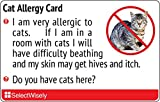 Cat Allergy Translation Card - Translated in Italian or any of 1 languages