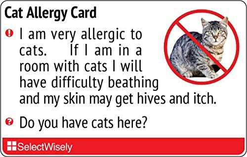 Cat Allergy Translation Card - Translated in Italian or any of 1 languages by SelectWisely
