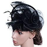 TBNA Bridal Black and Purple 2 Styles Flower Feathers Hat Wedding Fascinator Headband Hair Accessories Lady Hat Wedding Reception (Black)