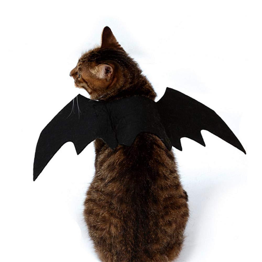 Spider Chats MOGOI Costume araign/ée pour Animaux de Compagnie Halloween Animaux Simulation Peluche araign/ée v/êtir avec Boucle de p/âte Ajustable au Cou pour Chiens