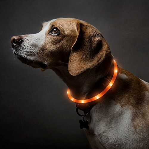BSeen LED Dog Collar, USB Rechargeable Glowing Safety Pet Collar with 3 Flash Modes, Water Resistant High Visiblity Silicone Light Up Collars for Small Medium Large Dogs (Orange)