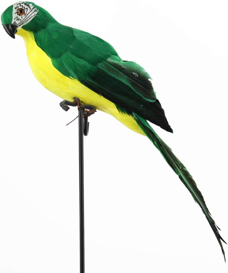 Feather Parrot Artificial Bird for Modern Home Garden Zoo Ornament Decoration Colorful 13.5inch(35cm), Green