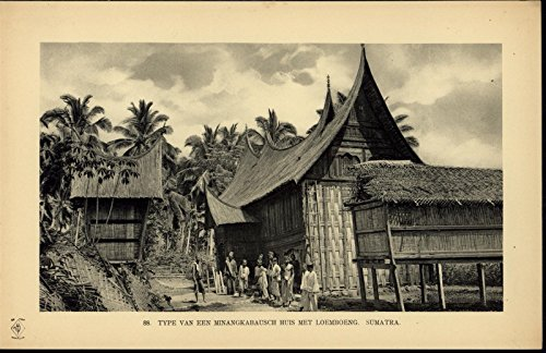 Sumatran Style Of House Thatched Roof Palm Trees scarce ca. 1912 Indonesia print