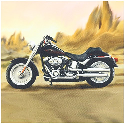 3dRose qs_4841_1 Quilt Square Picturing Harley-Davidson and No.174 Motorcycle