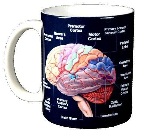 WILD COTTON Brain 11 Ounce Ceramic Coffee -
