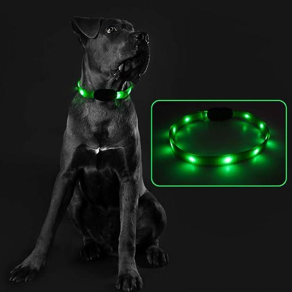 Expawlorer LED Dog Collar
