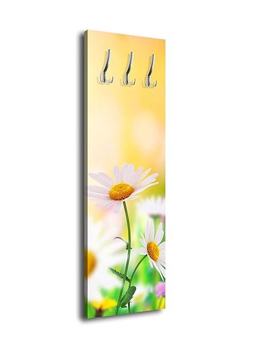 wandmotiv24 Perchero de Pared con diseño de ensueño Césped ...