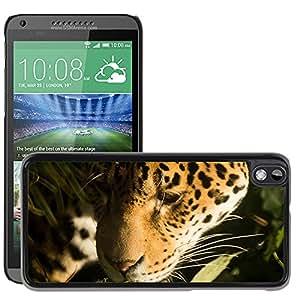 Super Stella Slim PC Hard Case Cover Skin Armor Shell Protection // M00144529 Jaguar Cat Feline Leopard Panther // HTC Desire 816