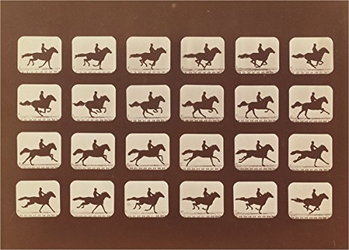 Fine Art Print | Eadweard Muybridge | Horses. Running. Phyrne L. No. 40 1879 | Vintage Wall Decor Poster Reproduction | 43in x 32in