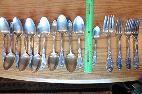 16 Rogers 1881 A1 Vintage Silverplate flatware Grapes La Vigne LOT Forks spoons