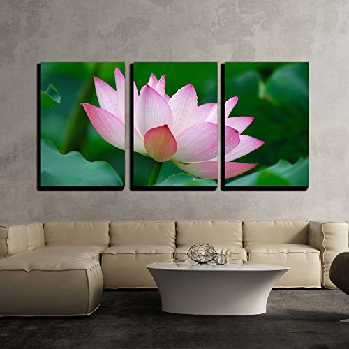 wall26 - 3 Piece Canvas Wall Art - Close-Up of Beatiful Pink Lotus - Modern Home Decor Stretched and Framed Ready to Hang - 16