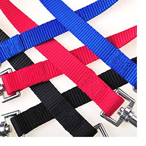 Leash Training - 200pcs Qualified Strong Nylon Pet Double Leash Twin Dog Multicolor Lead Walk Two Dogs Wa1878 - Collar Color Puppies Pulls For Book That Harness Your Puppy by Number onE (Image #5)