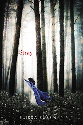 Download Stray PDF