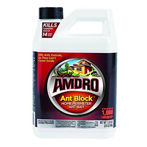 Amdro Ant