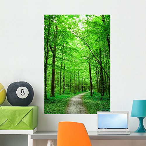 Wallmonkeys Green Nature Path Forest Wall Mural Peel and Stick Graphic (36 in H x 24 in W) WM43721