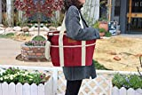 HappyPicnic 16L Large Insulated Bag, 25CAN
