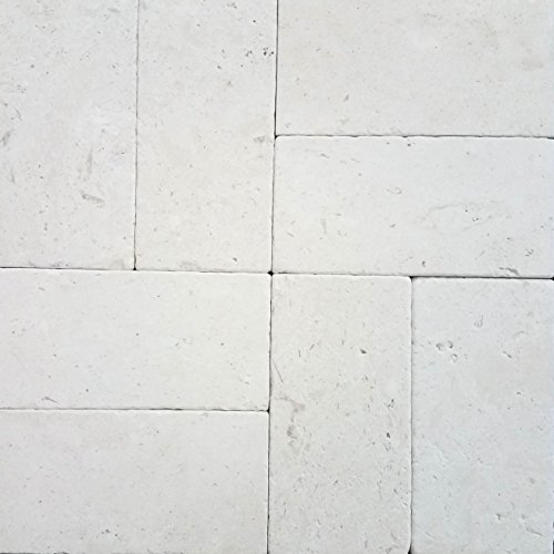 SAMPLE - Natural Limestone Pavers 6x12 (Aqua Shell) Pool & Patio, Driveway, Backyard, Outdoors & Indoors (Stone Patio Pavers Blue)