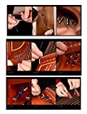 3 Pieces B19-21# Guzheng Strings for Professional/Music Instruments