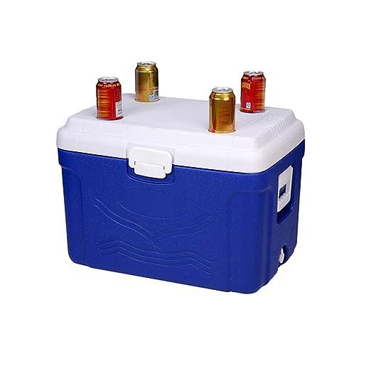 LIYANLCX Capacidad de 60 l Refrigerador/congelador portátil ...